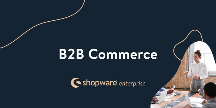 Shopware Enterprise B2B